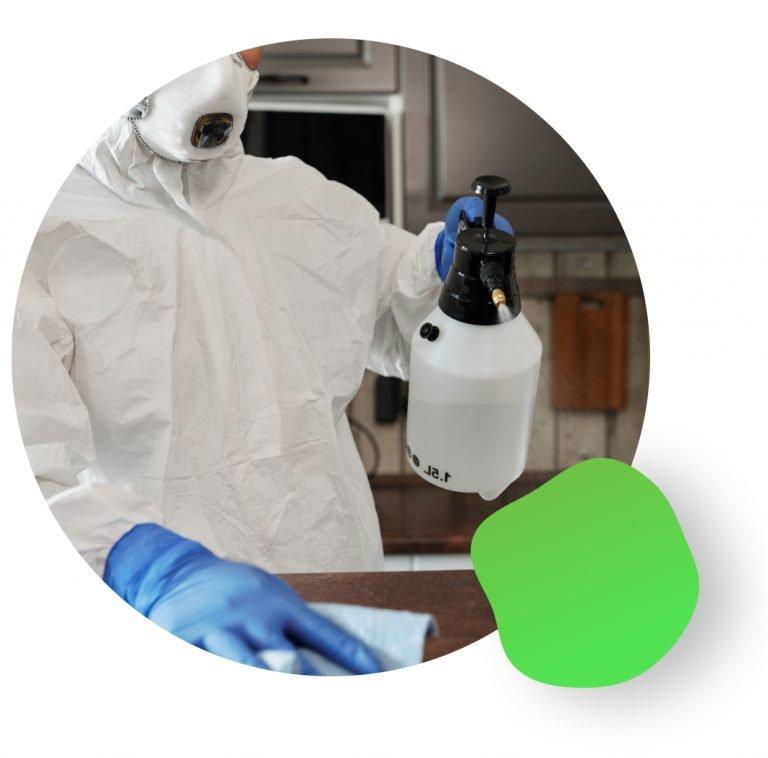 décontamination de meubles avec un virucide écologique