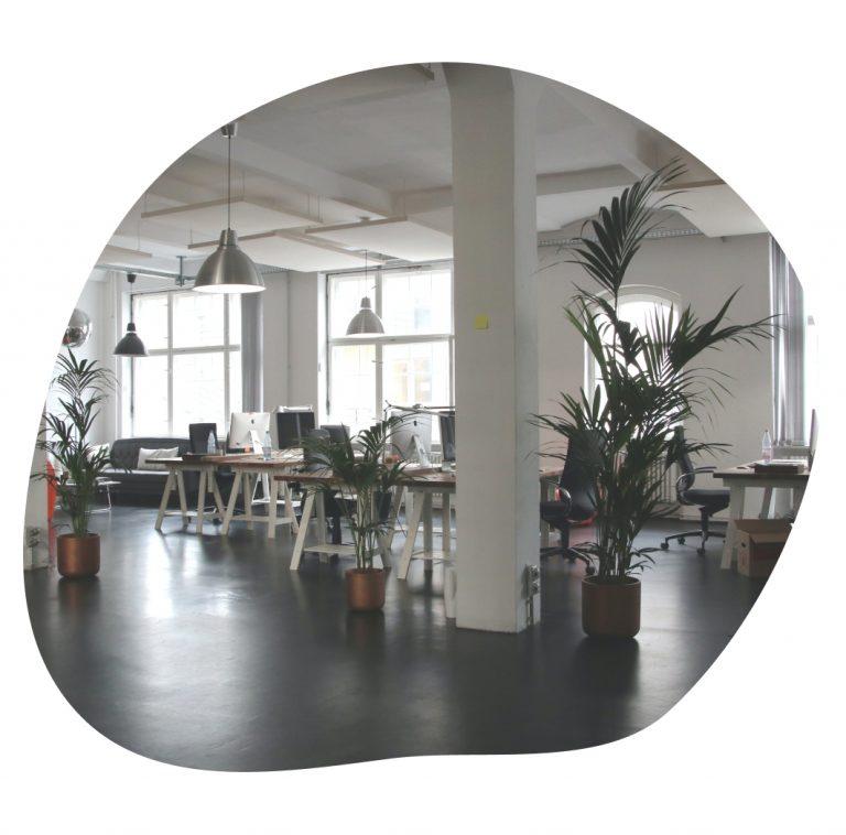 bureaux modernes en open space